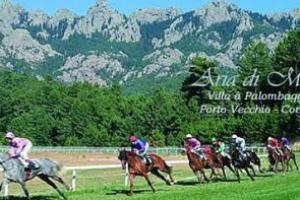 Course de chevaux en Corse